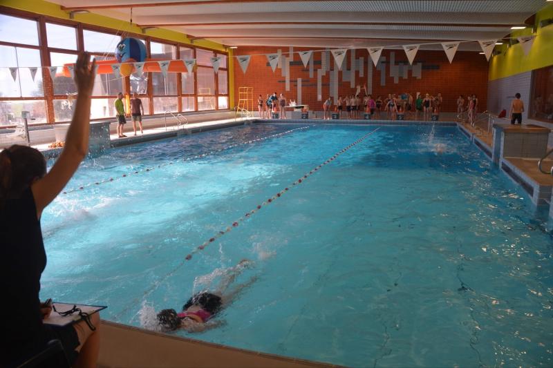 2019-02-20-zwemmarathon003